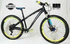 Dartmoor Hornet Custom-Enduro Rock Shox Reba / Sram NX / NS Bikes Enigma / Sram Level / Noa-Bl-Evo-1 Naben