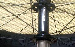 Novatec 190/197 mm Fatbike Hinterrad mit DTswiss BR710 Felge