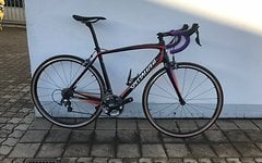 Specialized Amira Expert Carbon Gr.56