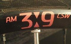 """DT Swiss CSW AM 3.9 Laufradsatz 29"""" asym. Last Fastforward"""