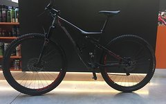 "Specialized Epic Expert 29"" Gr.: L Modell 2016"