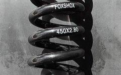 Fox Dämpferfeder 450 x 2.80