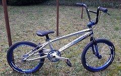"Chase Element BMX Pro XXL (21,5"")"