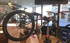 Kellys Bicycles WHIP 50 Dirtbike 2017 *Nagelneu mit Rechnung - Sofort lieferbar*