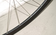 "Stans Notubes Alpine Disc 6-Loch 26""+Chris King nabe"