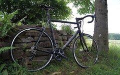 Stevens ASPIN CT Gr.XXL 64cm nur 8,5kg auch mit Mavic Laufradsatz erhältlich kompl. Ultegra Carbon Gabel uvp.2298 Euro