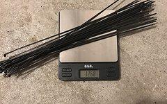 Sapim CX-Ray Messerspeichen schwarz - 62 Stück