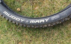 Schwalbe Muddy Mary DH Vertstar 26x2.35