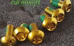 Cyconsult® Bremsscheibenschrauben *gold* (Set / 6 Stück)