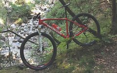 Specialized STUMPJUMPER MARATHON CARBON 29 Rahmen