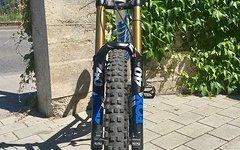 Canyon Torque DHX Custom Bike 2016