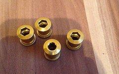 SRAM X.0 Kettenblattschrauben GOLD
