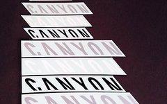 Canyon Aufkleber Set Rahmen Sticker Decals verschiedene Größen und Farben torque nerve strive