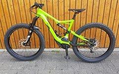 Specialized Levo FSR 6 Fattie Größe L HK Green wenig KM