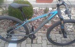 """Focus Black Forest 29R 3.0 (Gr.:17""""/43cm)"""