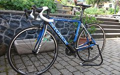 Storck Absolutist NEU