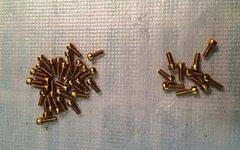 Ht-Components Schrauben M4x8mm gold