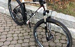 Focus Raven Carbon - 29R