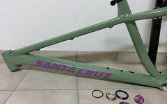 Santa Cruz Chameleon 29iger