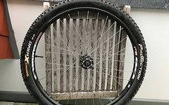 "Rigida Taurus 2000 DB 26"" 19 mm Tubeless"