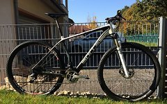 "Bulls Black Adder 29"" XTR, Team Edition"