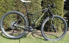 Specialized Fate Expert Carbon M