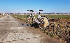 Citybike Bad Boy 8 Lefty / Fatty, Seltener Klassiker, Alfine8 Cannondale