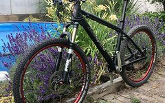 Liteville 101 Hardtail in L XTR