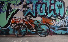 Green Bicycles Scope Dirt/Street/Pumptrack/4X Größe L Rahmen