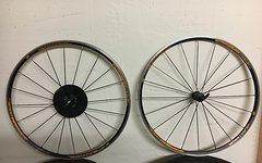 Mavic Aksium Race Rennrad Laufradsatz. Shimano 8-9-10-fach Freilauf.