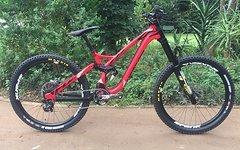 NS Bikes Custom Team Downhill Bike