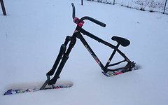 YT Industries Project Snowbike- Yt,Dj1,Ns Proof