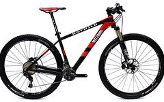 Rotwild R2 HT 29 Race Gr. M carbon-red Modell 2016