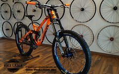 NS Bikes Fuzz Custom DH Bike