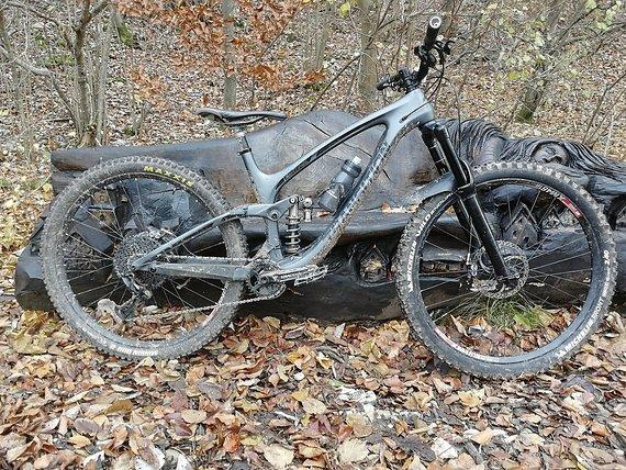 Transition Bikes Sentinel Carbon 2019 Rahmen, L, Fox DPX2 Performance Elite,