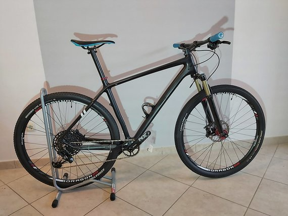 29 Zoll Carbon Mountainbike 10,55 kg Rahmengröße L/54cm