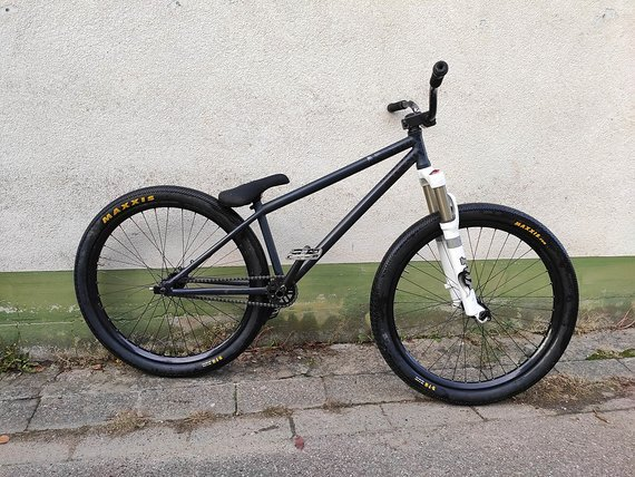 NS Bikes Majesty Custom FOX 36, DT Swiss