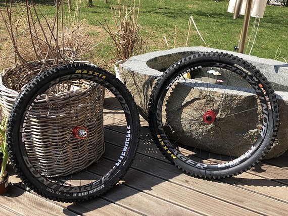 Bontrager Carbonlaufräder Line Pro 30TLR29 einschl. Hope Naben Pro 4 und roten Nippeln