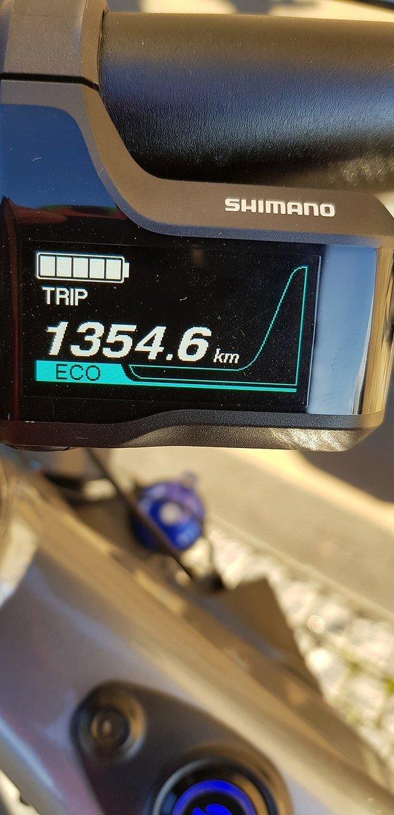 Focus E bike BOLD 2 LTD inXL Pedelec