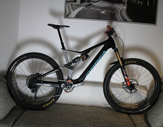 Orbea Rallon M10 XL Custom 29er Race Enduro