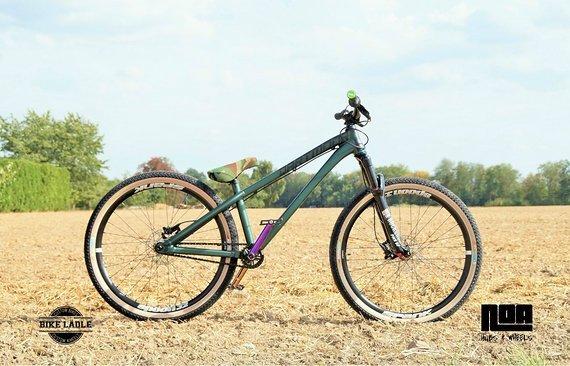 Dartmoor Two6Player Custom Dirt / Street Pumptrack-Bike Rock Shox Pike DJ, Spank Spoon 32 , Salt plus , ODI, DMR