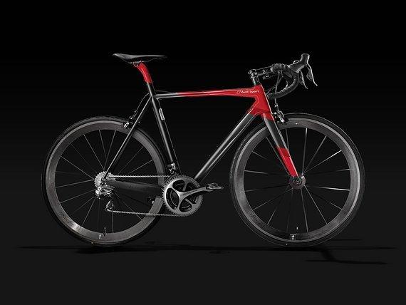 Audi / Lightweight Audi Sport Racing Bike (LW Urgestalt + LW Meilenstein)