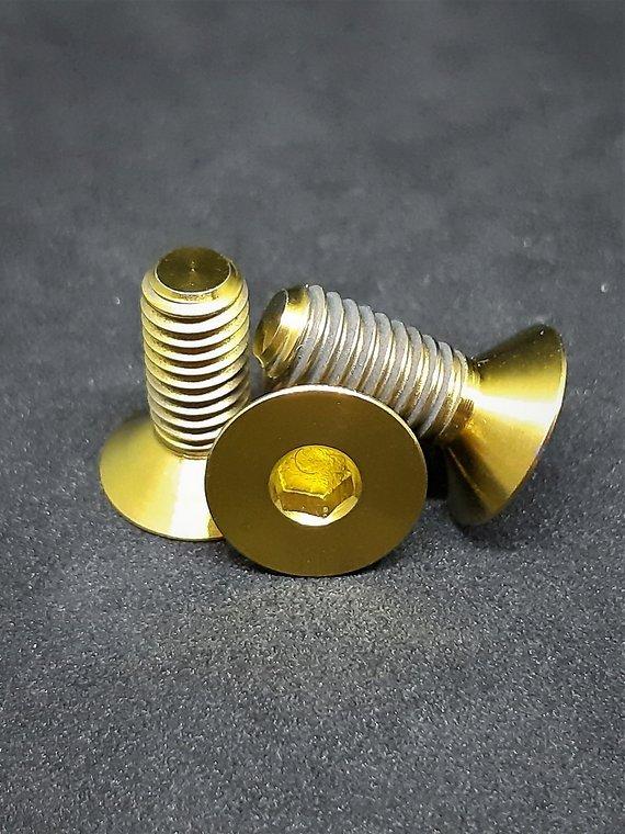 Ti-Suspension TITAN Kettenführungs Schrauben gold M6x15 NEU