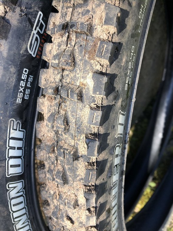 Maxxis + Conti Swamp Thing, DHF, High Roller, Mountain King
