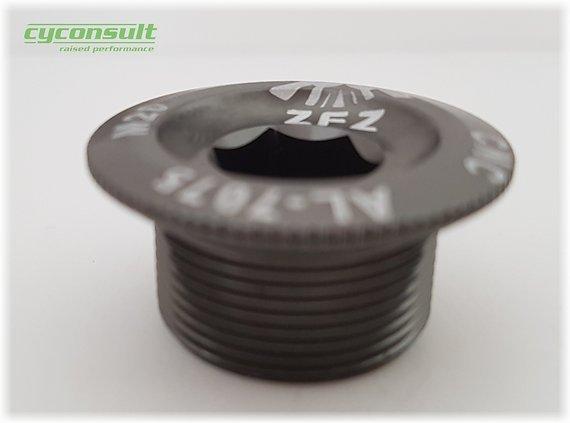 cyconsult® - Kurbelarmschraube M20