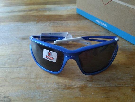 Alpina EYE-5 CM+ Radbrille