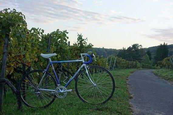 Titan CromoVelato Vintage Bike