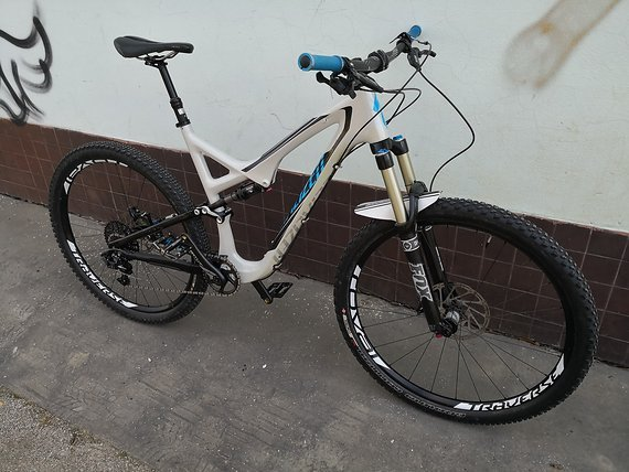 "Specialized Stumpjumper Fsr Expert Carbon 29"" Brain"