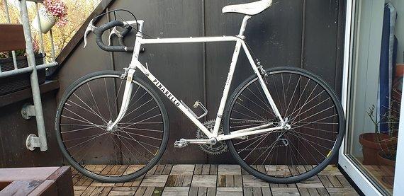 Pinarello Rennrad Treviso mit Campagnolo Ausstattung