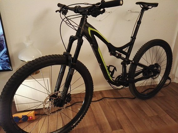 Specialized Sehr gut erhaltenes Specialized Stumpjumper Evo 29 in L